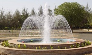 Fountain-Spray-Rings